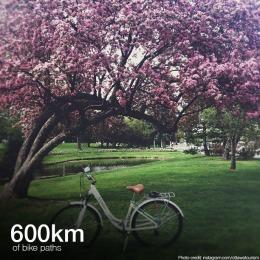bike paths copy