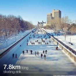 Long Skating Rink copy